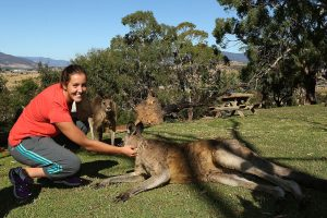 HOBART, AUSTRALIA - JANUARY 05:  Laura Robson of Great Britain feeds a kangaroo at Bonorong Wildlife Sanctuary during day two of the Hobart International at Domain Tennis Centre on January 5, 2013 in Hobart, Australia.  (Photo by Mark Metcalfe/Getty Images)